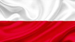 Polski Prawnik Clearwater